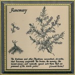 GB Rosemary in Hogarth Frame