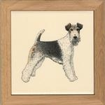 Wire Fox Terrier