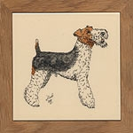 Wire Fox Terrier (SN)